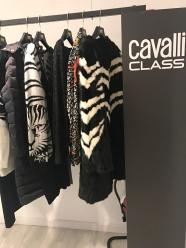 Cavalli Class <3